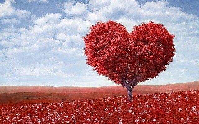 heart awakening